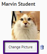 change picture button